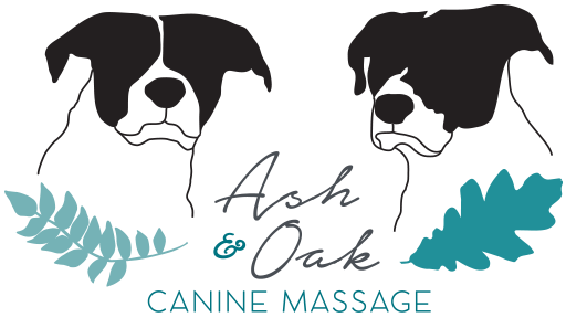 Ash & Oak Canine Therapy